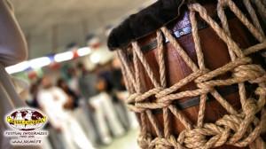 capoeira-paris-2015-festival-capoeiraizes-abada-jogaki-105