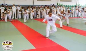 capoeira-paris-2015-festival-capoeiraizes-abada-jogaki-131