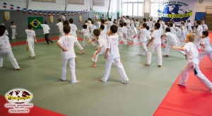 capoeira-paris-2015-festival-capoeiraizes-abada-jogaki-185