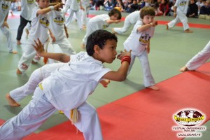 capoeira-paris-2015-festival-capoeiraizes-abada-jogaki-196