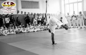 capoeira-paris-2015-festival-capoeiraizes-abada-jogaki-42