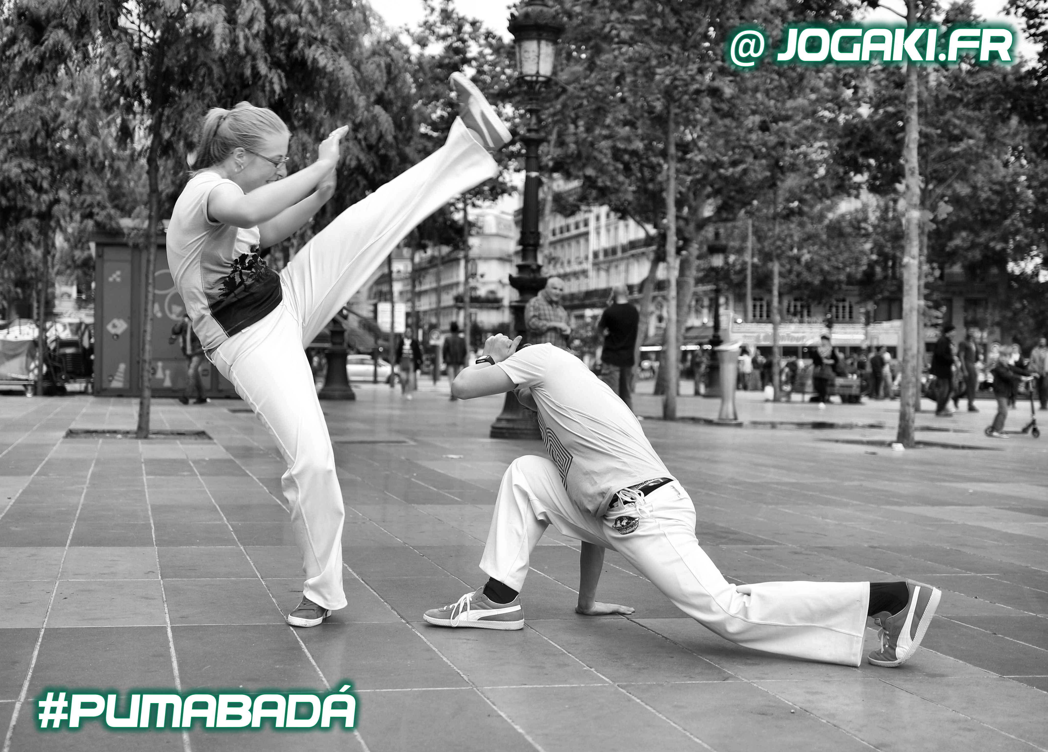 capoeira-paris-pumabada-jogaki-animation-bresil-danse