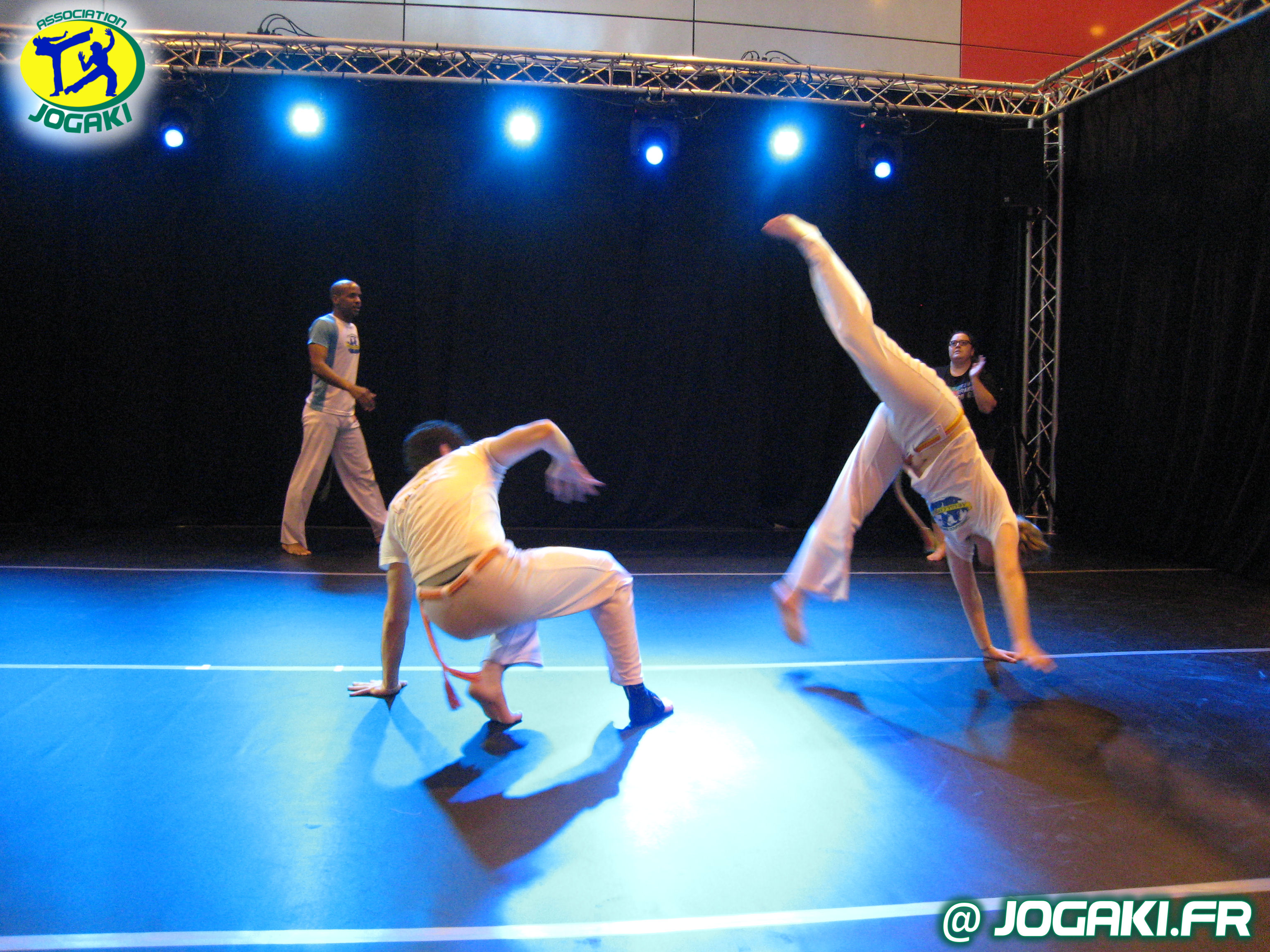 spectacle-capoeira-paris-danseurs-evenement-happening-bresil-280