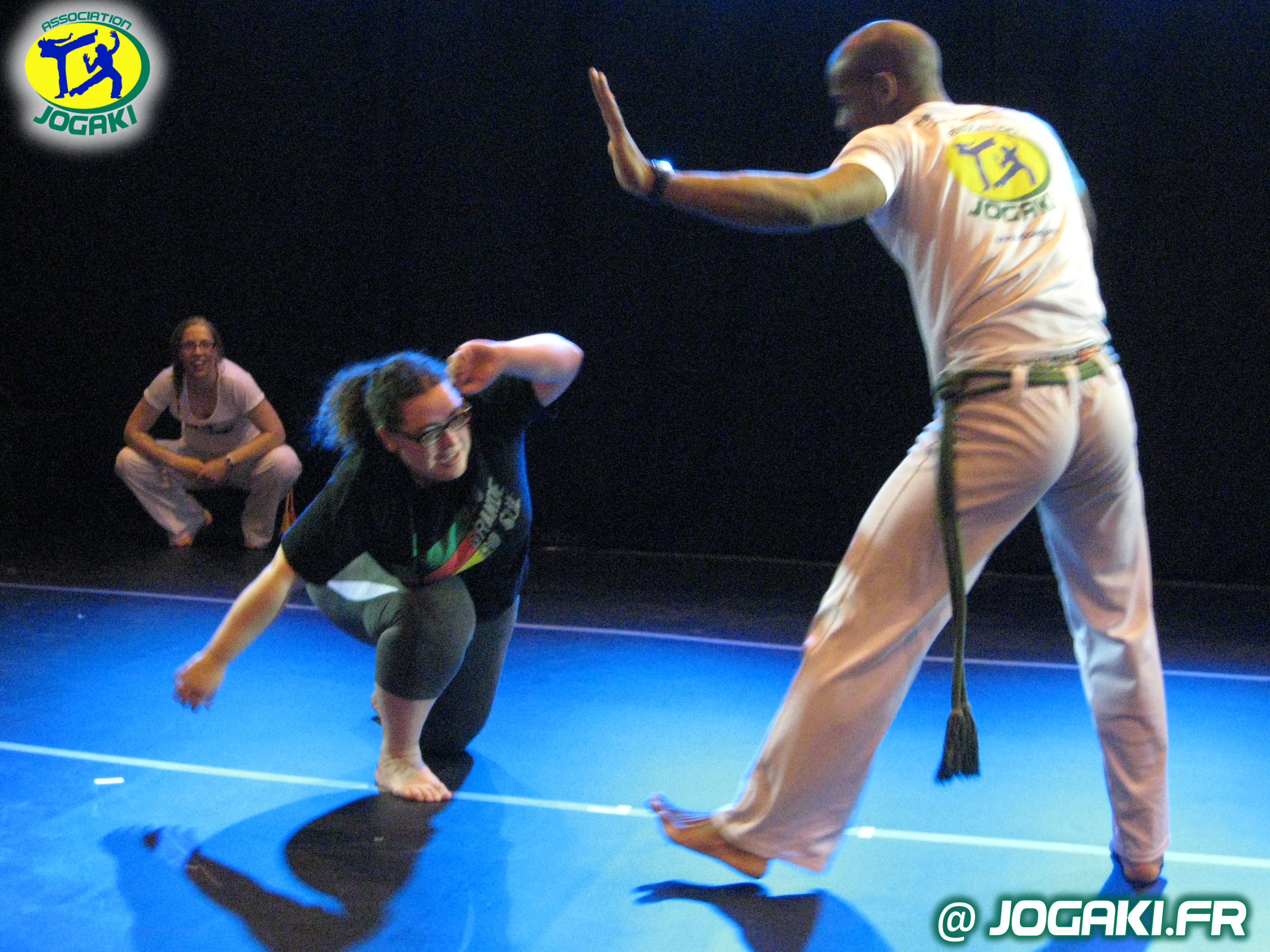 spectacle-capoeira-paris-danseurs-evenement-happening-bresil-284