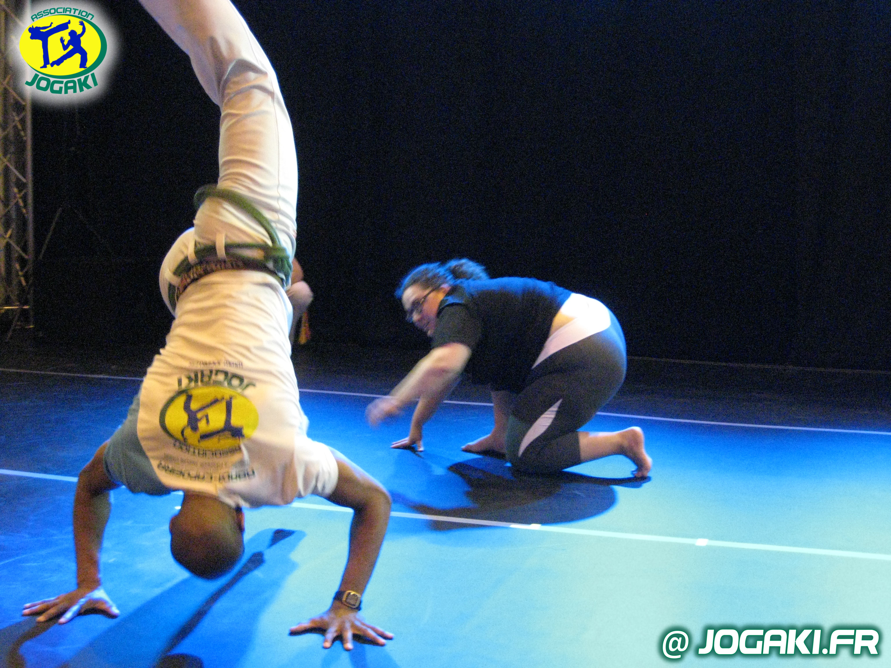 spectacle-capoeira-paris-danseurs-evenement-happening-bresil-289