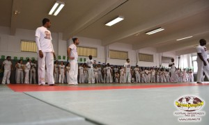 capoeira-paris-2015-festival-capoeiraizes-abada-jogaki-6