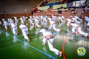 capoeira-paris-abada