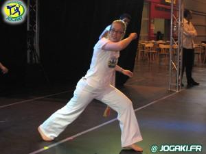 demonstration-de-capoeira-paris-salon-porte-de-versailles-340