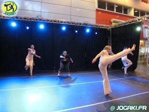 demonstration-de-capoeira-paris-salon-porte-de-versailles-345