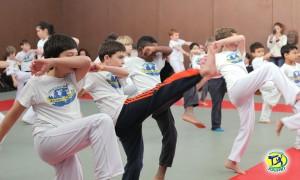 initiation-enfants-paris-animation-scolaire-capoeira-sport-centre-de-loisirs