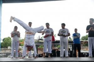 show-capoeira-paris-2014