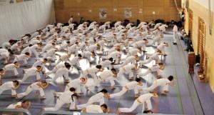 capoeira paris echauffement